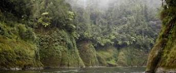 Whanganui 1