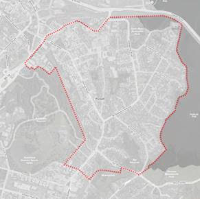 Parnell Plan area